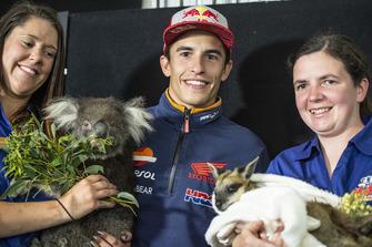 Marc Marquez, Repsol Honda Team, mit Koala und Känguruh
