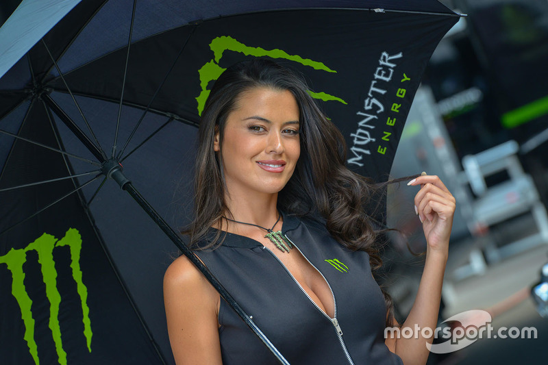 Lovely Monster Energy girl
