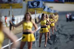 La grid girl di Petru Florescu, Fortec Motorsports Dallara F317 - Mercedes-Benz