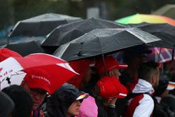 Фанати та парасолі