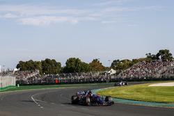 Даниил Квят, Scuderia Toro Rosso STR12, и Антонио Джовинацци, Sauber C36
