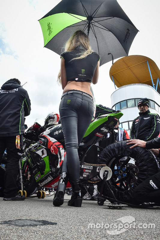 Gridgirl voor Jonathan Rea, Kawasaki Racing Team