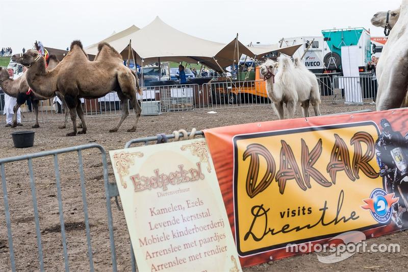 Dakar in Drenthe