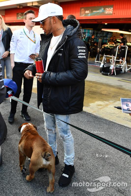 Lewis Hamilton, Mercedes AMG F1 swith de su perro Roscoe