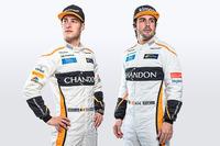 Stoffel Vandoorne, Fernando Alonso, McLaren