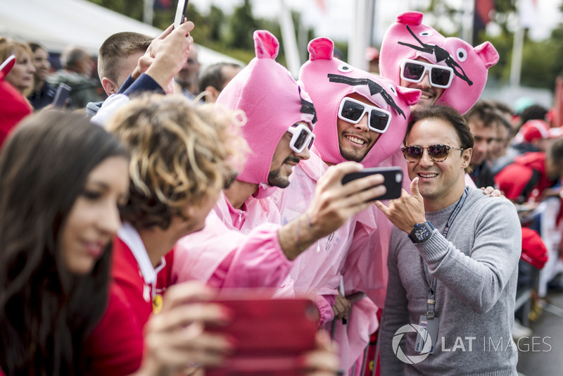 Felipe Massa dan Pink Panthers