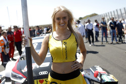 Chica de la parrilla de Loic Duval, Audi Sport Team Phoenix