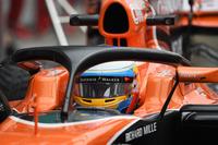 Fernando Alonso, McLaren MCL32 halo ile