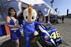 Chicas calientes de la parrilla con la moto de Valentino Rossi, Yamaha Factory Racing