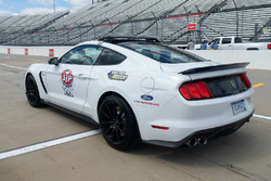 Pace-Car: Ford Mustang Shelby GT350