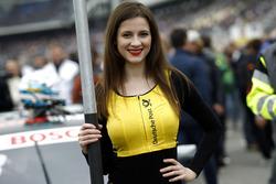 Gridgirl für René Rast, Audi Sport Team Rosberg, Audi RS 5 DTM