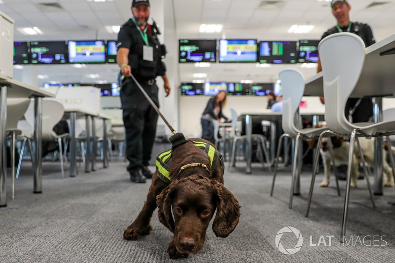 Polizei mit Hund im Media-Center