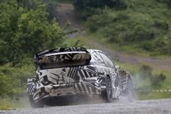 Дитер Деппинг и Эрвин Момбертс, Volkswagen Motorsport, Volkswagen Polo R WRC 2017