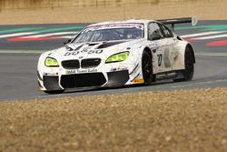 Алекс Дзанарді, BMW M6 GT3 #50, Alex Zanardi BMW Team Italia