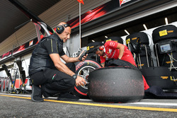 Pirelli engineer and Pirelli tyres