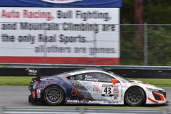 #43 RealTime Racing, Acura NSX GT3: Ryan Eversley, Tom Dyer