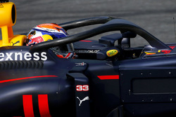 Max Verstappen, Red Bull Racing halo ile