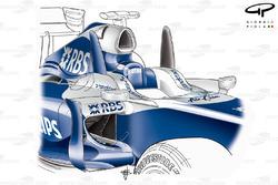 Williams FW31 2009 cockpit fins