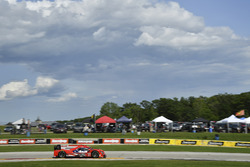 #31 Action Express Racing Cadillac DPi: Eric Curran, Dane Cameron