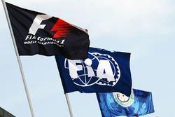 Прапори F1 та FIA