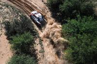 #304 Toyota Gazoo Racing: Жінель де Вільєр, Дірк фон Цітцевітц