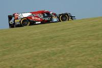 #38 DC Racing Oreca 07 Gibson: Ho-Pin Tung, Oliver Jarvis, Thomas Laurent