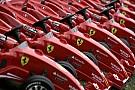 Ferrari  facts and figures