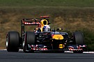 Red Bull Hungarian GP Friday Practice Report