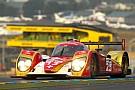Jeroen Bleekemolen returns to REBELLION Racing at Sebring and Le Mans