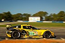 Corvette Racing Sebring race report