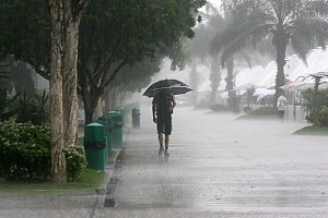 Formula 1 Webber 'wary' of late rain in Malaysia