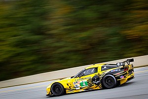 ALMS Special feature Multiple GT Champion Gavin gives insight into the popular class