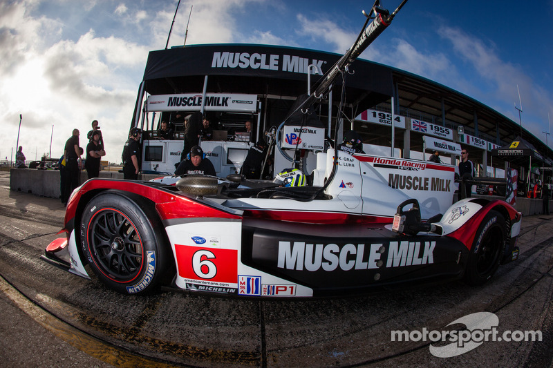 The Sebring Challenge - Muscle Milk Pickett Racing preview video