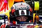 Хорнер подтвердил, что Квят сохранит место в Red Bull в сезоне-2016