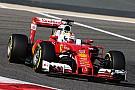 Der Ausfall von Sebstian Vettel war eine Verkettung unglücklicher Ereignisse