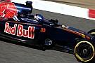 """Lammers blij met bevestiging Verstappen: """"Aanval op de troon bij Red Bull"""""""