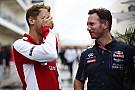 A Red Bull igazat ad Vettelnek: túl bonyolult a Forma-1