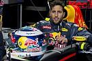 Ricciardo, a partiállat