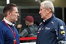 F1 Jos Verstappen fue a observar a los jóvenes talentos de Red Bull por pedido de Marko