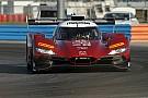 IMSA 2018: Joest Racing wird Mazda-Einsatzteam in den USA