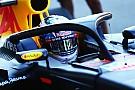 La FIA confirme le Halo pour 2018, contre la majorité des teams