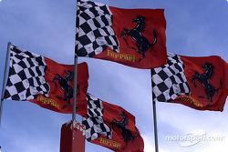 Dukungan tifosi terhadap Ferrari