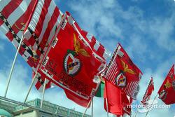 S.L. Benfica colors
