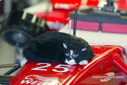 A Toyota crew member taking a much deserved nap