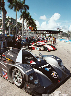 Cadillac of Miami starting grid