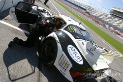 Marcos Racing USA team
