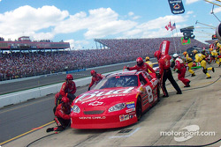 Pitstop for Dale Earnhardt Jr.