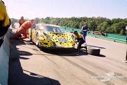 Pitstop for #8 G&W Motorsports BMW Picchio DP2: Darren Law, Patrick Huisman