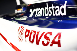 Williams FW33 detail