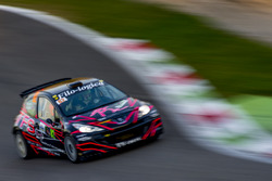 Marco Roncoroni, Paolo Brusadelli, Peugeot 207